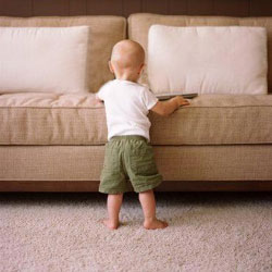 Expert Upholstery Cleaning Canberra