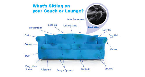 upholstery cleaning Melbourne 3000