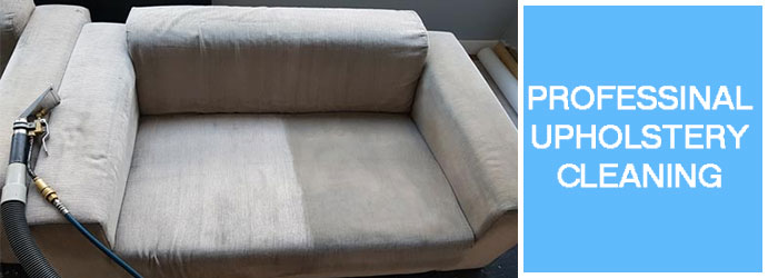 Professional Upholstery Cleaning Services in Hawthorndene