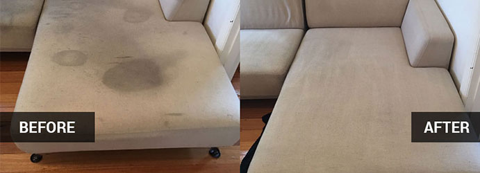 Amazing Upholstery Cleaning Services in  Manly