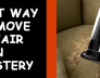 Remove Pet Hair on Upholstery Melbourne