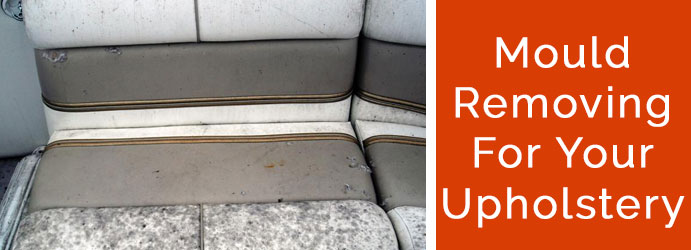 Mould Removing For Your Upholstery