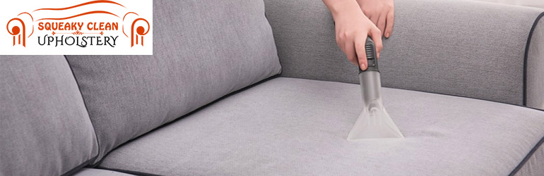 Upholstery Cleaning Newstead