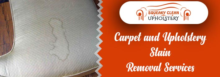 Carpet And Upholstery Stain Removal Services